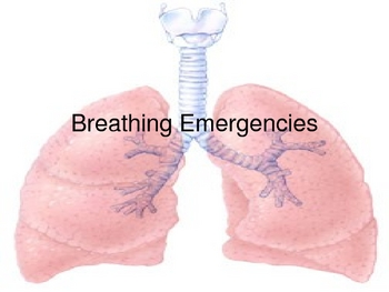 Breathing Emergency's