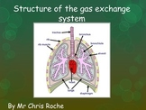 Breathing and Gas exchange Lesson 1 (Chapter 3 IGCSE Biolo