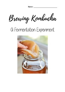 Brewing Kombucha - Fermentation Experiment Workbook