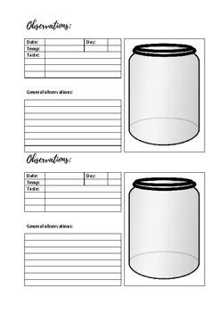 Brewing Kombucha - Fermentation Experiment Workbook