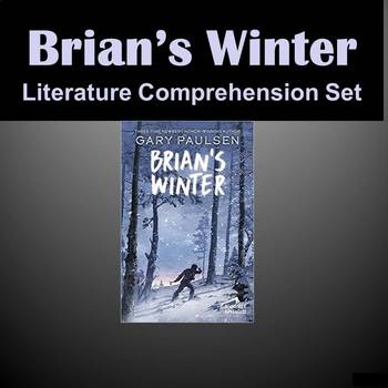Brian's Winter - Storytown - Worksheets, Centers, Vocabulary, Pronouns & More
