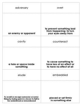 Brian's Winter Vocabulary Bingo