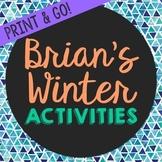 Brian's Winter Novel Unit Study Activities, Book Companion