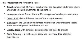 Brian's Hunt Novel Study Unit BUNDLE