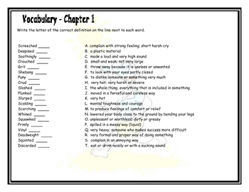 Bridge To Terabithia  Vocabulary, Questions, and Activities