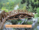 Bridges- An Introduction to Beam, Arch and Suspension