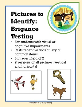 Brigance Images: Receptive Identification of Pictures of Common Items
