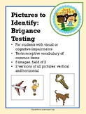 Brigance Images: Receptive Identification of Pictures of C