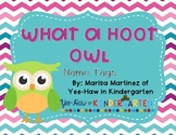 Bright Color Owl Nametags