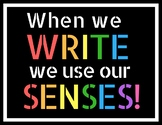Bright Colours Reading/Writing Poster Bookmark Bundle