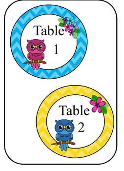 Bright Owls Classroom Decor