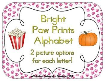 Bright Paw Prints Alphabet Cards