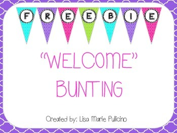 Brightly Colored Flag Bunting Welcome Banner