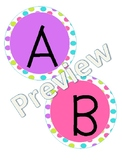 Brights Word Wall Words and Labels