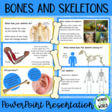 Brilliant Bones: An introduction to skeletons PowerPoint and PDF