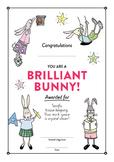 Awards Certificates - 30 Positive Commendations - Brillian