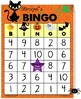 Halloween Bingo - Addition and Subtraction Facts with Bristol