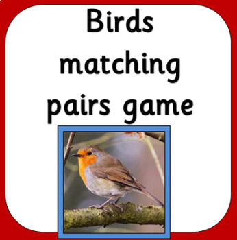 British Birds matching pairs game- UK birds