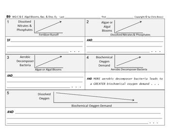 Brocci Bundle Water Qual F: Dissolved Oxygen Factors CAUSE & EFFECT Graphing Bun