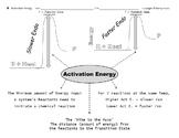 Brocci Bundle Chemistry K: Chemical Reactions & The Five RATE FACTORS Bundle