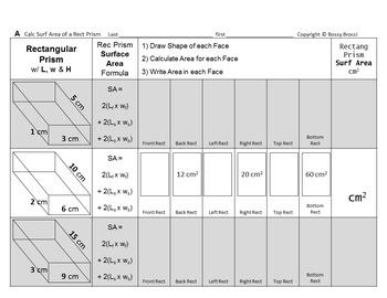 Brocci Bundles: Surface Area of Triangular & Rectangular PRISMS Bundle