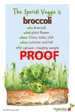 Broccoli  Poster - Available in English and Spanish!
