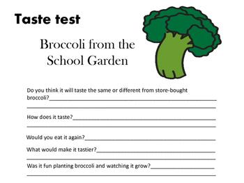 Broccoli Taste Test