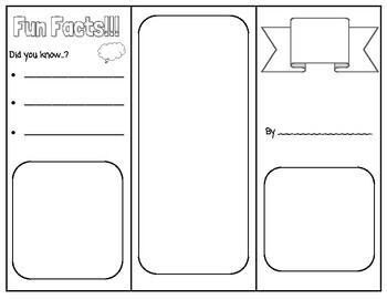 PDF File 8 Unique Brochure Template Designs