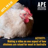 Broiler Chicken Welfare | Arts, Year 9-10 | Media Arts