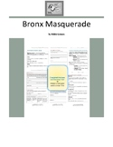 Bronx Masquerade Complete Literature and Grammar Unit