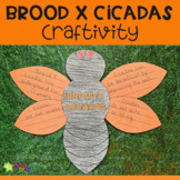 Brood X Cicada Activity