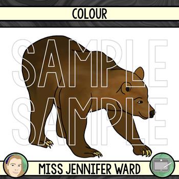 Brown Bear Clipart