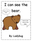 Brown Bear Concepts of Print Book