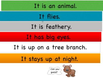 Brown Bear Describing Book
