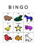 Brown Bear Eric Carle Bingo Boards