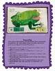 Brown Bear: LAMP Words for Life Adapted Book, Special Ed, Autism, SLP, AAC