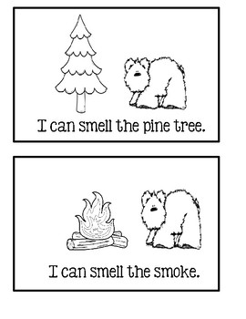 5 Senses Book 3 - Baby Bear What Can You Smell?