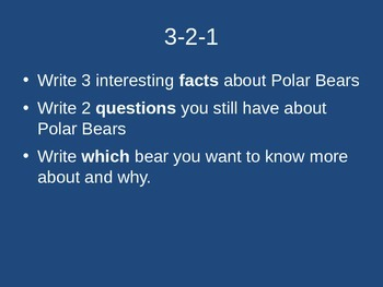 Brown Bears and Polar Bears fun facts expository reading and writing