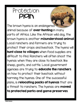 Brown Hyena- A Research Project