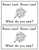 Brown Leaf, Brown Leaf What Do You See?