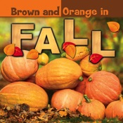 Brown and Orange in Fall