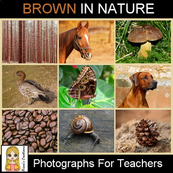 Brown in Nature Photograph Pack