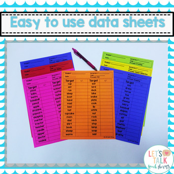 """""""Brr""""-A Winter Phonological Process Packet for Speech Therapy"""