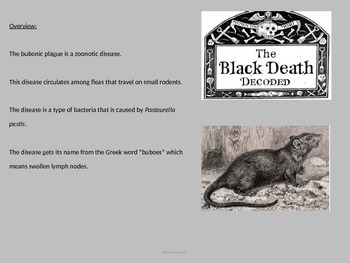 Bubonic Plague - Black Death - Power Point - Full History Facts Information