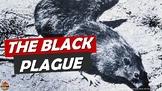 Bubonic Plague The Black Death Power Point