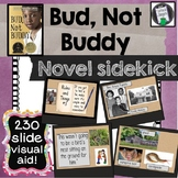 Bud Not Buddy Novel Sidekick Visual Aid Novel Companion