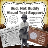 Bud, Not Buddy Novel Visual Text Support  Activities Questions Art Project