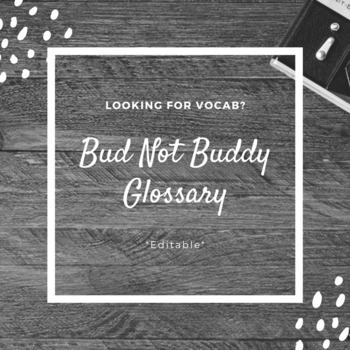 Bud Not Buddy Vocabulary for Entire Novel (editable)