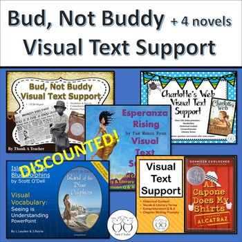 Bud, Not Buddy Visual Text Support + 4 more VTS for your favorite novels!
