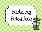 Budding Botanists {germinating science fun}